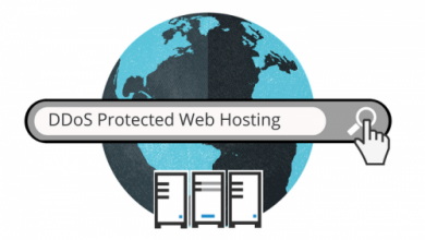 Photo of Choosing Web Hosting with DdoS Protected VPS and Hybrid Security