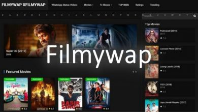 Photo of Filmywap, Download all the Movies for Free