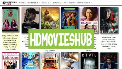 Photo of Hdhub4u: Download Bollywood HD Hindi 300MB Movies Hdhub4u: