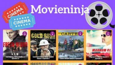 Photo of Top 10 Best Movieninja Alternatives That Are 100% Working